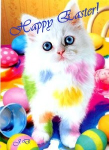 easter-cat[1]
